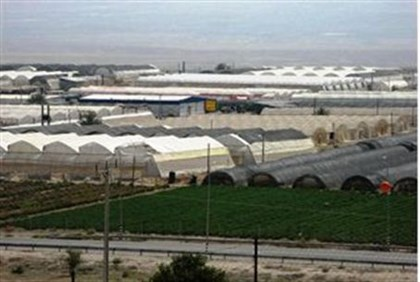 Greenhouses in the Jordan Valley