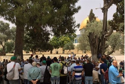A large group of Muslms on the Temple Mount