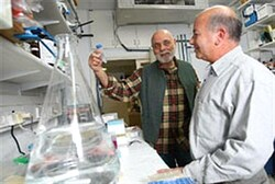Dr. Shlomo Dagan, right, with DiaPep 277 inventor Prof. Irun Cohen