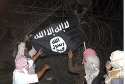 Terrorists raise Al Qaeda flag at Gora base in Sinai