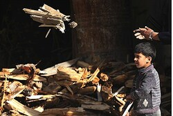 Boy carries firewood in Damascus's Duma neighborhood