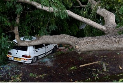 View of a car damaged by a large tree had blown down onto a parking car by strong wind in Tel Aviv,