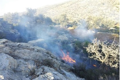 One of the fires set by Arabs outside Neria Monday