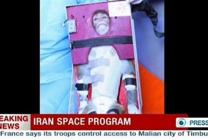 Still image of Iranian monkey that was launched into space
