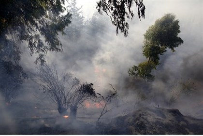 Jerusalem forest fire in Ein Kerem