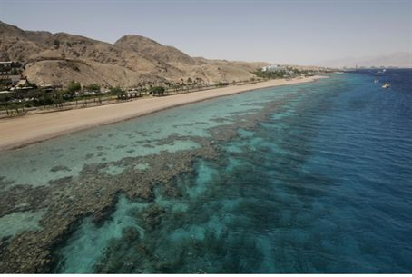 Coral beach at the Red Sea