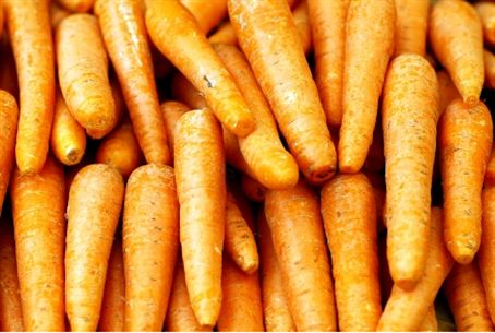 Carrots -a  new Israeli specialty in Russia